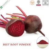 Natural Pigment Red Juice Beet Root Powder