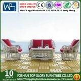 Modern Artificial Outdoor Garden Furniture Wicker Sofa (TG-016)