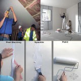Jointing Putty/Crackproof Drywall Compound/Multipurpose Joint Putty Powder