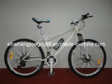New Model Mountain Bicycle for Hot Sale (MTB-007)