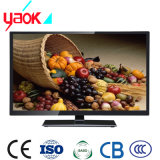 High Quality and Competitive Price TV