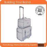 New Design Item Fashion Trolley Travel Luggage (BDM052)