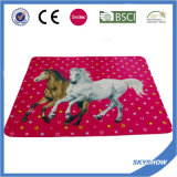 2016 Hot Sale Promotion Polyester Blanket (SSB0212)