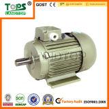 LTP Y2 Series Industrial Motor