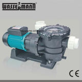 Wholesale Swimming Pool Circulation Water Pumps