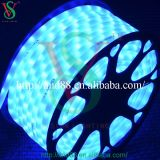 10mm 24V blue Christmas LED Rope Lights