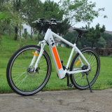 Mountain E Bike with Goood Quality (RSEB-304)