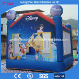Princess Inflatable Bouncy Castle