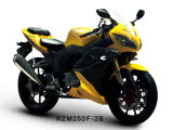 Rzm250f-2b Racing Motorcycle 150cc/200cc/250cc