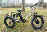 500W 3 Wheel Electric Bicycle with Cargo