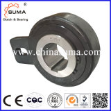AV Series Wholesale Roller Type Freewheel Backstops Engine Bearing