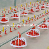 Full Set Automatic Poultry House Equipment for Broiler Rearing