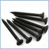 Black Bugle Head Fine Thread Drywall Screw