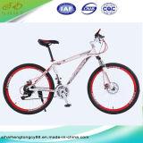 26'' Steel Disc Brake for Mountain Bicycle/Bike Wholesale (SH-MTB012)