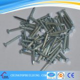 Galvanized Concrete Nails with Flute Shank
