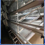 Best Quality of Chicken Supplier Chicken Cage for Sale