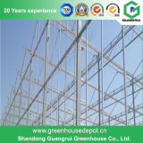Film, Venlo, Glass Greenhouse Multi Span Steel Structure