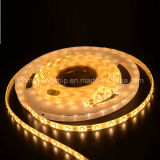 Hot saled SMD3528 LED strips with FCC&CE