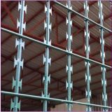 Cbt Type Concertina Razor Barbed Wire (ISO9001: 2001)