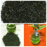 High Mountain Organic Green Tea