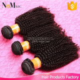 Kanekalon Fiber Synthetic Kinky Afro Hair Marley Braid Brazilian Hair Afro Kinky Curly in Bulk