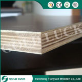 Waterproof Glue High Quality Brown Film Faced Plywood