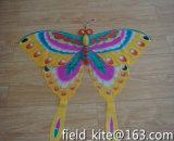 Best Quality Butterfly Shape Kite
