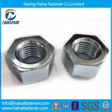 in Stock DIN934 Carbon Steel Washer Face Hex Nut-Gr4.8