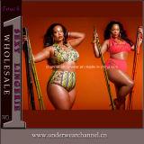Women Bikini Set Luxury Swimsuit Triangle Plus Size Swimwear (TYQ069)