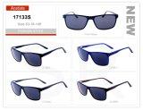 Manufacture Wholesale Stock Eyewear Eyeglass Acetate Frame Sunglasses 17133s
