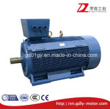 Y2 Low Voltage High Output Three Phases Electric Motor