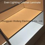 LED Shelf Panel Lighting LGP for Display