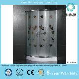 New Indoor Stainless Steel Shower Room (BLS-9614)