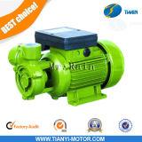 Db45 0.75HP Vortex Electric Pump 0.55kw Vortex Water Pump