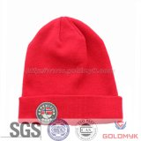 Wholesale Custom Winter Knitted Beanie Cap and Hat (GKL-0050)