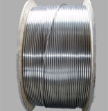 SUS 316 Stainless Steel Coil Tube with High Quality