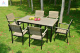 100% Plastic Wood Outdoor Furniture Park Furniture