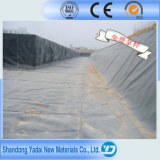 Impermeable HDPE Geomembrane Pond Liner for Fish Farming