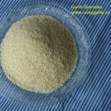 Nature China Garlic Granule for Sale