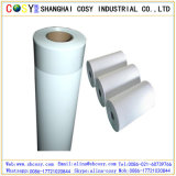 Eco-Solvent Self Adhesive PP Synthetic Paper