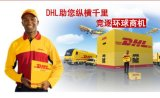 Chengdu DHL, DHL International Express, Export