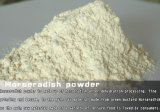 Hoaseradish Powder with High Quality