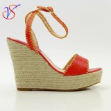 Sex Fashion High Heeled Women Lady Shoes Sandals for Socially Business Sv-Wf-020