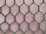 PVC Coated /Hot Dipped Gavalnized for Gabion Box