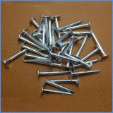 High Quanlity Zinc Coated Cupper Nails Guangzhou Supplier