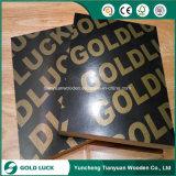 China Factory Supply 12mm Phenolic Board