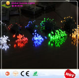White/ Warm White/ Red/ Green/ Blue/LED String Lights Solar Powered