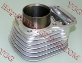 Motorcycle Parts Cylinder Kit Best Cylinder for Titan125