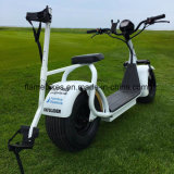 City Electric Motor Scooter with 1000W Brushless Motor
