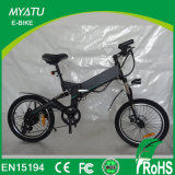 Folding Electric Bicycle Mini 250W Brushless 36V Electric Bicycle From Guangdong China